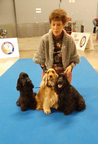 de gauche à droite  Orthence,Lucy, Laura de la Petite Pinochère .